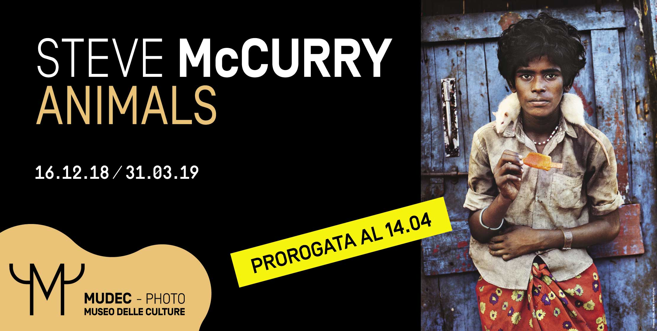McCurry-HP-2220x1120-0414